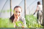 Quels aliments bio acheter en priorité ?