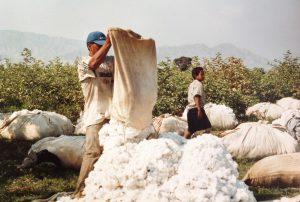 vêtements en coton bio